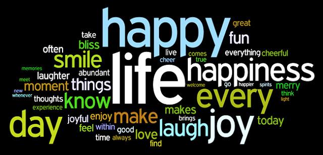 felicidad-son-muchas-cosas