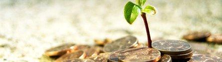 dinero-y-naturaleza